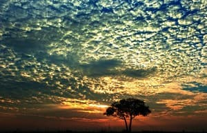 African Sunset at Murchison Falls, Uganda0036